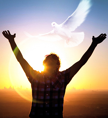 what-is-the-holy-spirit-dove