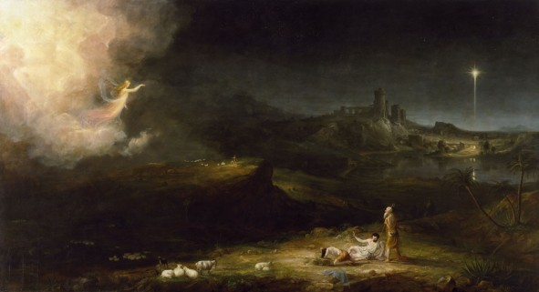 cole-angel-shepherds